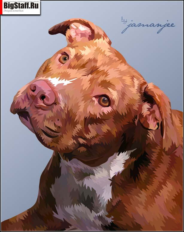 the_cute_pitbull_by_jamanjee