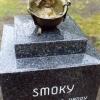 Самый героический Йоркширский терьер Smoky