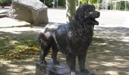 Леонберг – город или собака