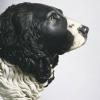 Собака лорда Дадли
