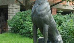 Собака Радзивилла