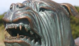 Линия собак Порт-Артура