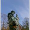 Франц Фердинанд и его собаки