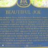 Прекрасная Джо