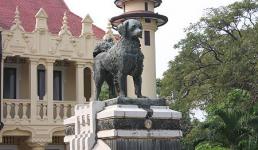 Собака перед замком