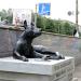 Бездомный пес Бенедикт из Кирова