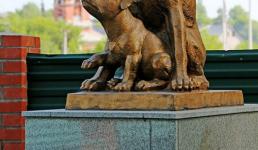 Стоматолог и памятник  собаке