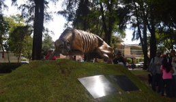 Парк собак в Гвадалахаре